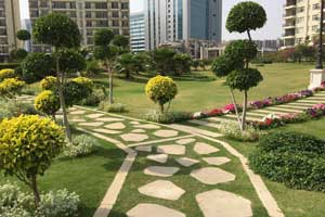 Landscape Design Courses in Bangalore Indiranagar at FLUX