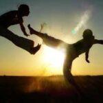 Capoeira, Aerial silks, Kalaripayattu & Arm Balance: Body Movement Plan